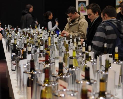 beaujolais-dupeuble-au-salon-place-des-vins