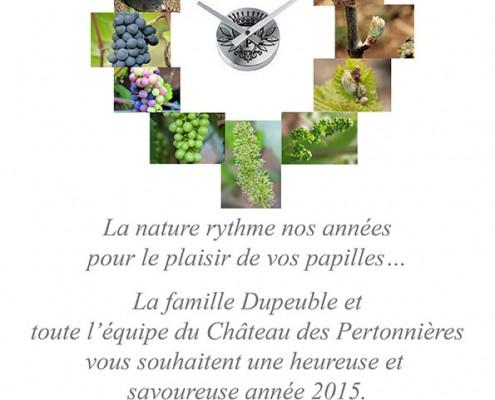 Beaujolais Dupeuble Meilleurs Voeux pour 2015